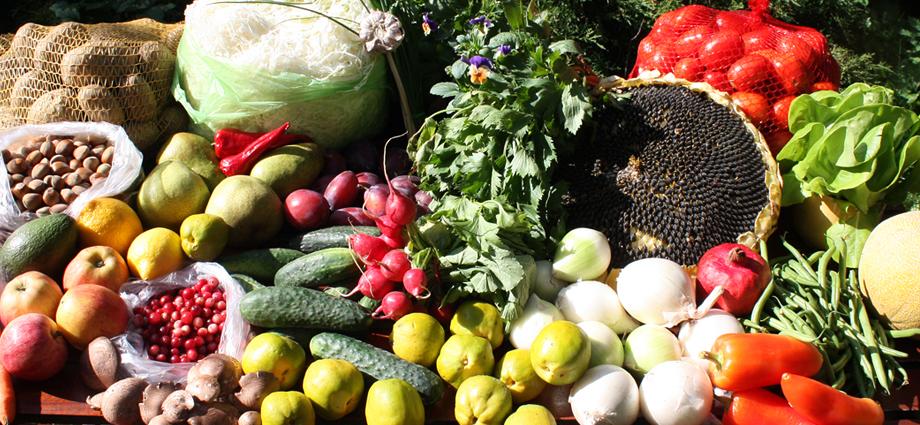dlaczego dieta roślinna jest zdrowa