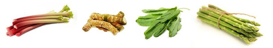 wieloletnie warzywa - ZDROWIE od KUCHNI - magazyn ryhenka